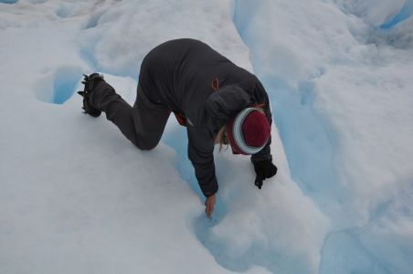 getting a drink Out on the Moreno Glacier
