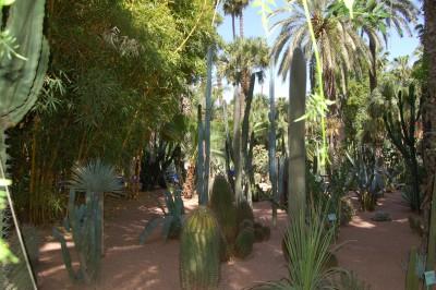 Le Jardin Majorelle, Marrakech