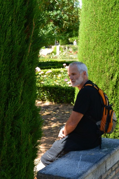 The gardens of the Alcazar